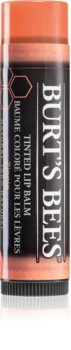 Burt's Bees Tinted Lip Balm balsam do ust
