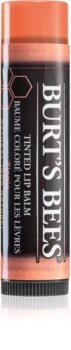 Burt's Bees Tinted Lip Balm baume à lèvres