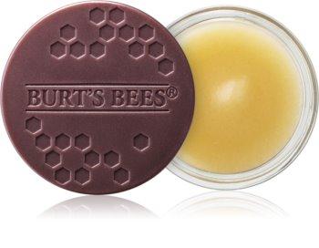 Burt's Bees Lip Treatment trattamento notte intensivo per le labbra