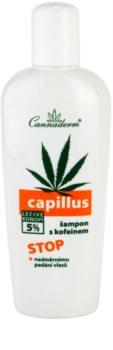 Cannaderm Capillus champú con cafeína anticaída