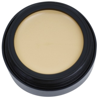 Catrice Liquid Camouflage High Coverage Concealer krycí make-up