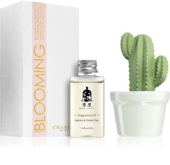 Chando Blooming Lemon & Green Tea aroma difuzer s punjenjem