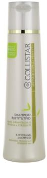 Collistar Special Perfect Hair šampon pro poškozené, chemicky ošetřené vlasy