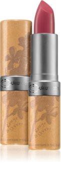 Couleur Caramel Lipstick krémová hydratační rtěnka