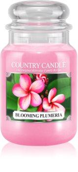 Country Candle Blooming Plumeria Tuoksukynttilä