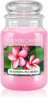Country Candle Blooming Plumeria vonná svíčka