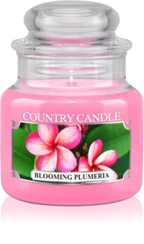 Country Candle Blooming Plumeria Duftkerze