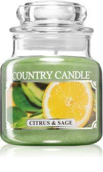Country Candle Citrus & Sage vonná sviečka