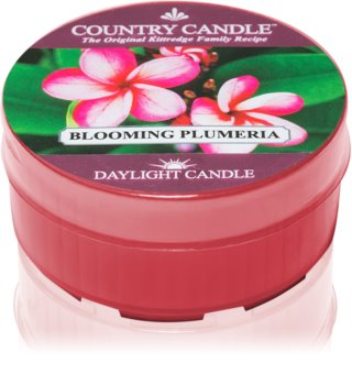 Country Candle Blooming Plumeria teamécses