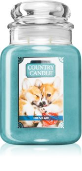 Country Candle Fresh Air Puppy scented candle