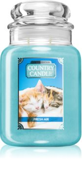 Country Candle Fresh Air Kitten candela profumata
