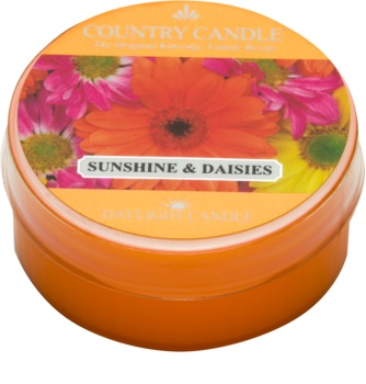 Country Candle Sunshine & Daisies bougie chauffe-plat