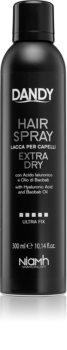 DANDY Hair Spray lacca per capelli fissante forte con acido ialuronico