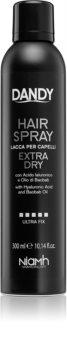 DANDY Hair Spray laque cheveux extra fort à l'acide hyaluronique