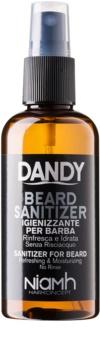 DANDY Beard Sanitizer spray disinfettante senza risciacquo per barba