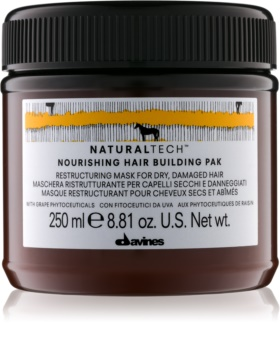 Davines Naturaltech Nourishing Mask for Dry and Damaged Hair