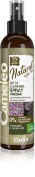 Delia Cosmetics Cameleo Natural öblítést nem igénylő spray kondicionáló