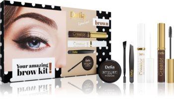 Delia Cosmetics Eyebrow Expert Brown darilni set V. (za obrvi) za ženske
