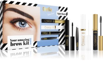 Delia Cosmetics Eyebrow Expert Light Black set cadou III. (pentru sprancene) pentru femei