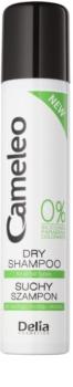 Delia Cosmetics Cameleo Dry Shampoo with Volume Effect