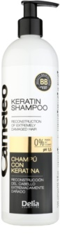 Delia Cosmetics Cameleo BB Keratin Shampoo For Damaged Hair