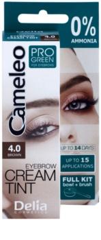 Delia Cosmetics Cameleo Pro Green szemöldökfesték ammónia nélkül