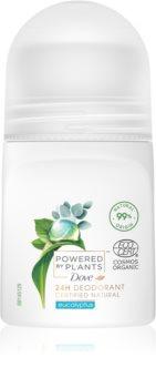 Dove Powered by Plants Eucalyptus guličkový dezodorant roll-on