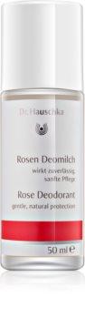 Dr. Hauschka Body Care desodorante de rosa roll-on