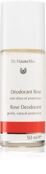 Dr. Hauschka Body Care desodorizante de rosa roll-on