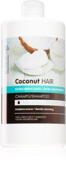 Dr. Santé Coconut hidratáló sampon száraz és törékeny hajra