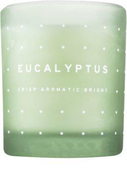 DW Home Eucalyptus vonná svíčka