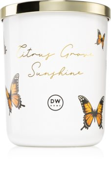 DW Home Citrus Grove Sunshine scented candle