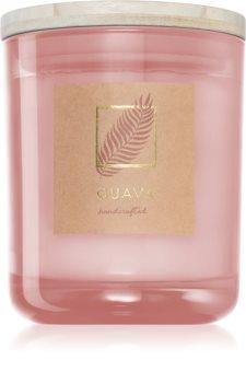 DW Home Tropic Guava candela profumata