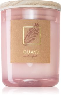 DW Home Tropic Guava scented candle