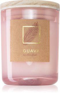 DW Home Tropic Guava Tuoksukynttilä