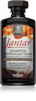 Farmona Jantar šampon pro tmavě hnědé a světle hnědé vlasy