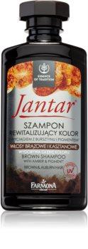 Farmona Jantar shampoing pour cheveux châtains et brun foncé
