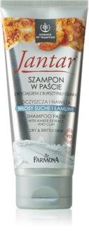 Farmona Jantar Amber Extract & Clay das Reinigungsshampoo für trockenes und zerbrechliches Haar