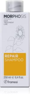 Framesi Morphosis Repair tápláló sampon a haj regenerálásáért és megerősítéséért