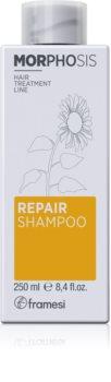 Framesi Morphosis Repair vyživující šampon pro obnovu a posílení vlasů