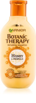 Garnier Botanic Therapy Honey obnovitveni šampon za poškodovane lase