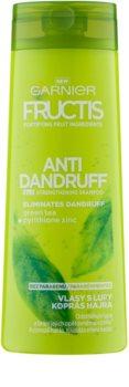Garnier Fructis Antidandruff 2in1 champô anticaspa para cabelo normal