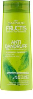 Garnier Fructis Antidandruff 2in1 шампоан против пърхот за нормална коса