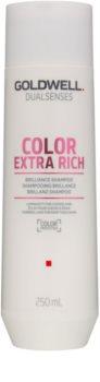 Goldwell Dualsenses Color Extra Rich champú protector del cabello teñido