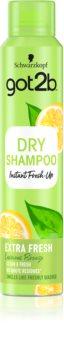 got2b Fresh it Up Extra Fresh száraz sampon a  felesleges faggyú felszívódásáért és a haj frissítéséért
