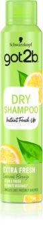 got2b Fresh it Up Refreshing, Oil-Absorbing Dry Shampoo