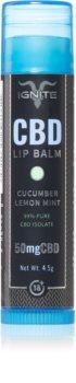 Ignite CBD Cucumber Lemon Mint 50mg балсам за устни