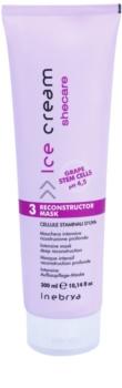 Inebrya Ice Cream Shecare маска интенсивного действия для сухих, поврежденных и подвергнутых химическому воздействию волос