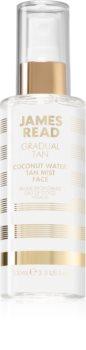 James Read Gradual Tan Coconut Water Tan Mist Face Self-Tanning Mist for Face