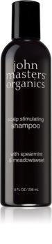 John Masters Organics Scalp Stimulating Shampoo For Oily Scalp